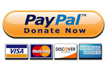 paypal donate now button